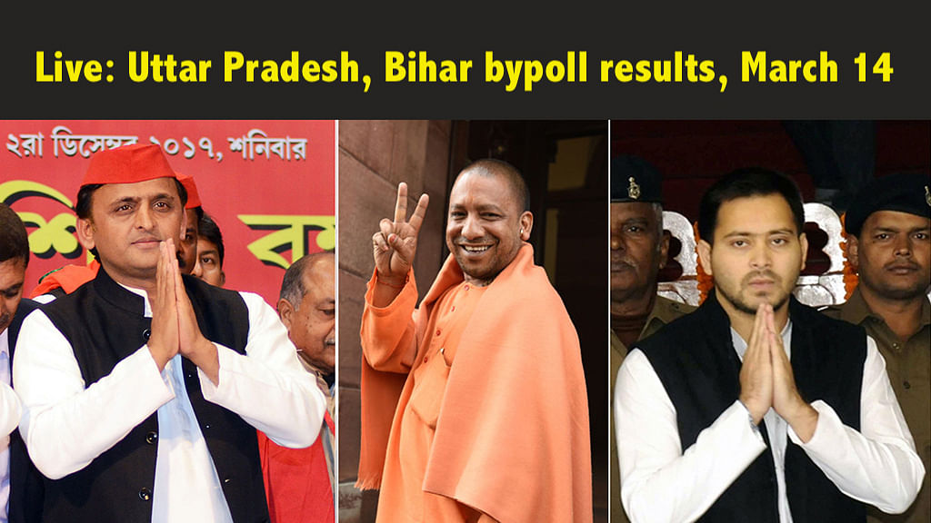 Bypoll Results: SP wins Gorakhpur, Phulpur; RJD retains Araria