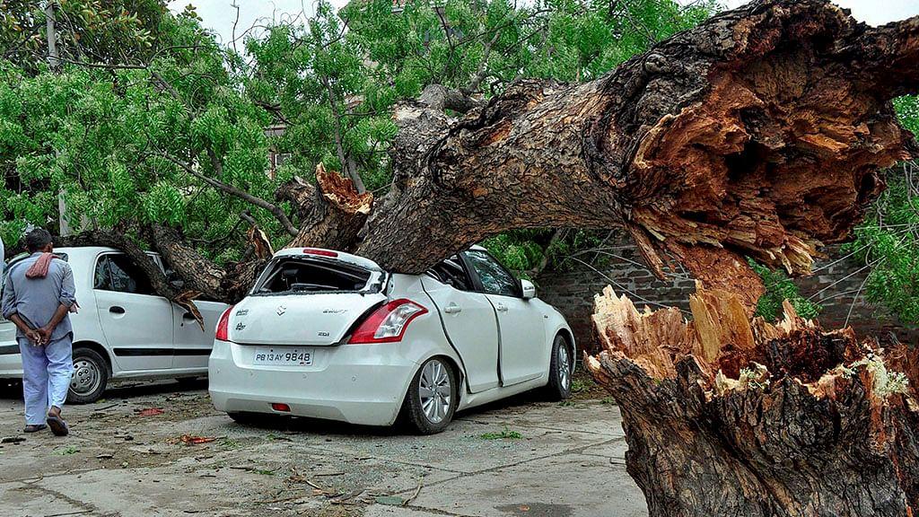 64 in Uttar Pradesh die in storm; 43 dead in Agra alone