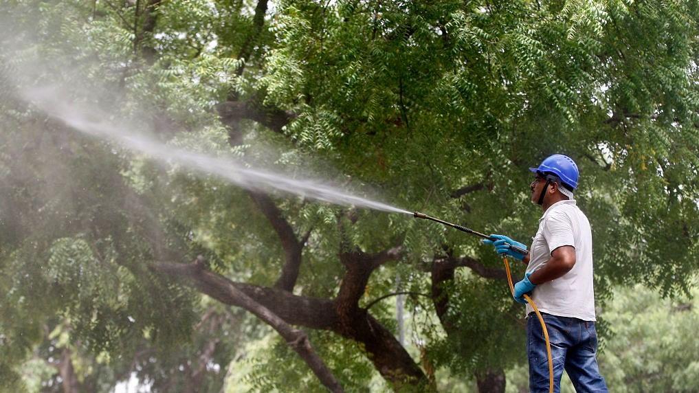 'Delhi Trees SOS' springs up as Delhi set to lose around 16,500 trees