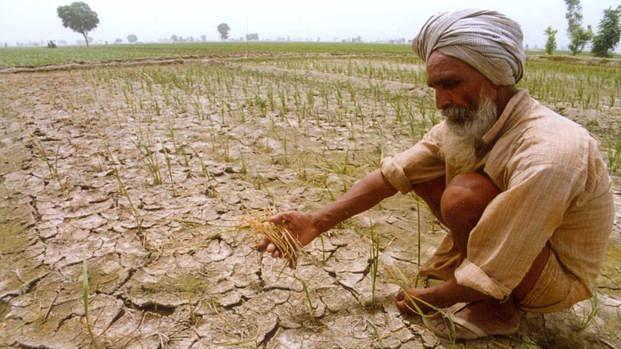 MSP hike leaves farmers & Yogendra Yadav cold