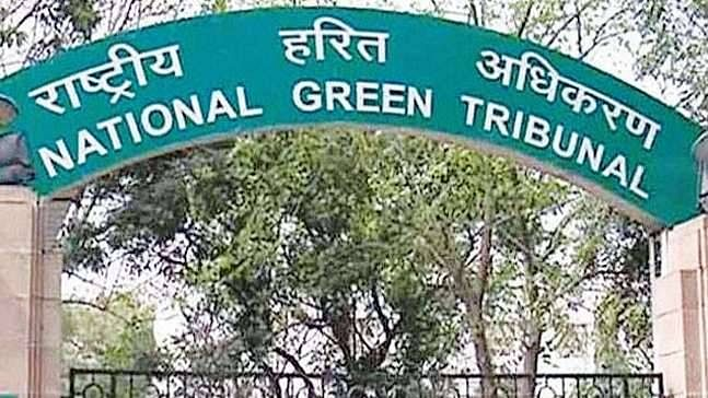 Emission fiasco: NGT asks Volkswagen to explain reasons for not recalling cars