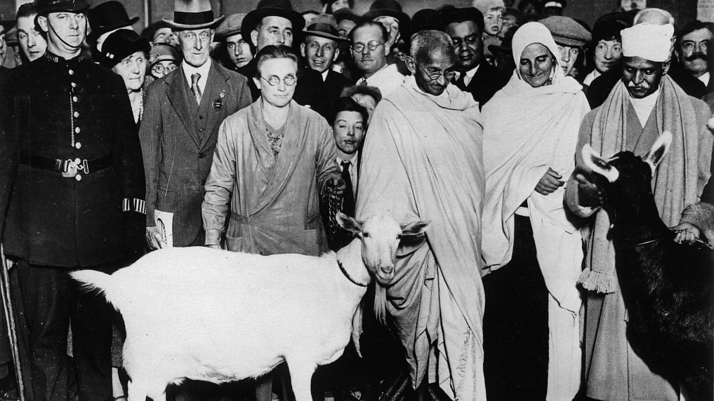 Remembering Mahatma Gandhi on Martyr's Day: Gandhiji's understanding of the man, nature and God triad