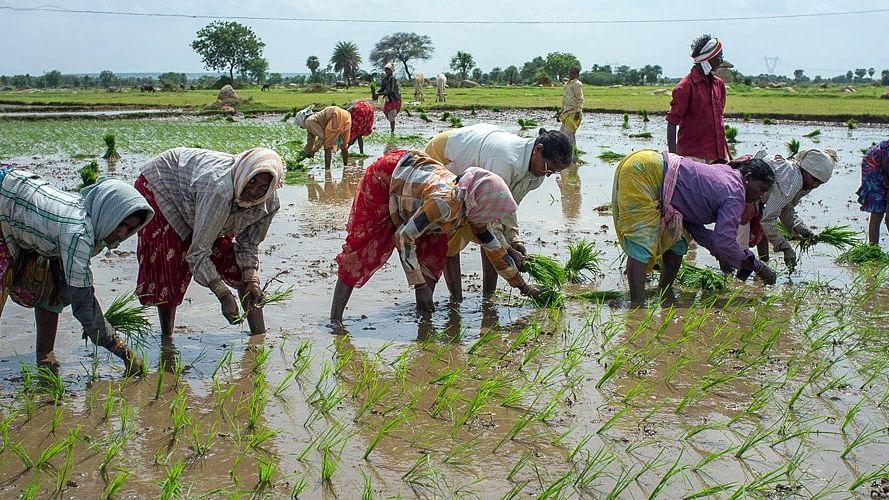 EU asks PM Modi: How will you double farmers' income?