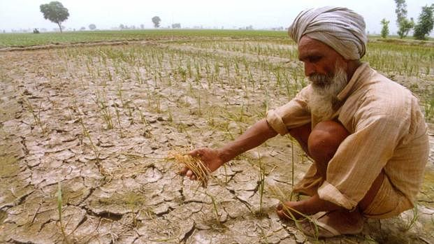 Decline in agricultural revenues force farmers to become labourers