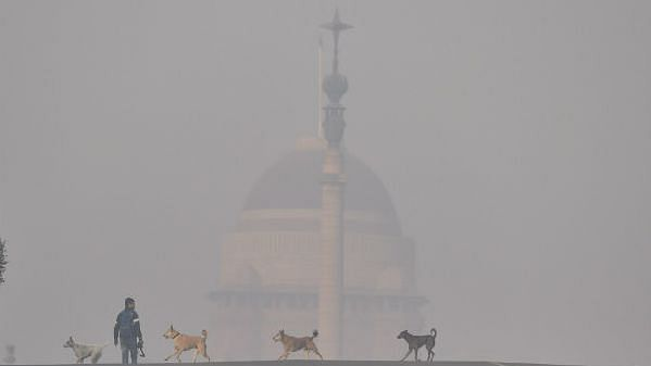 Cold wave continues unabated in Kashmir Valley as fog descends on New Delhi