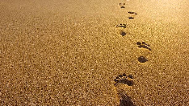 Kalachuvadu means footprints of time. A representative image