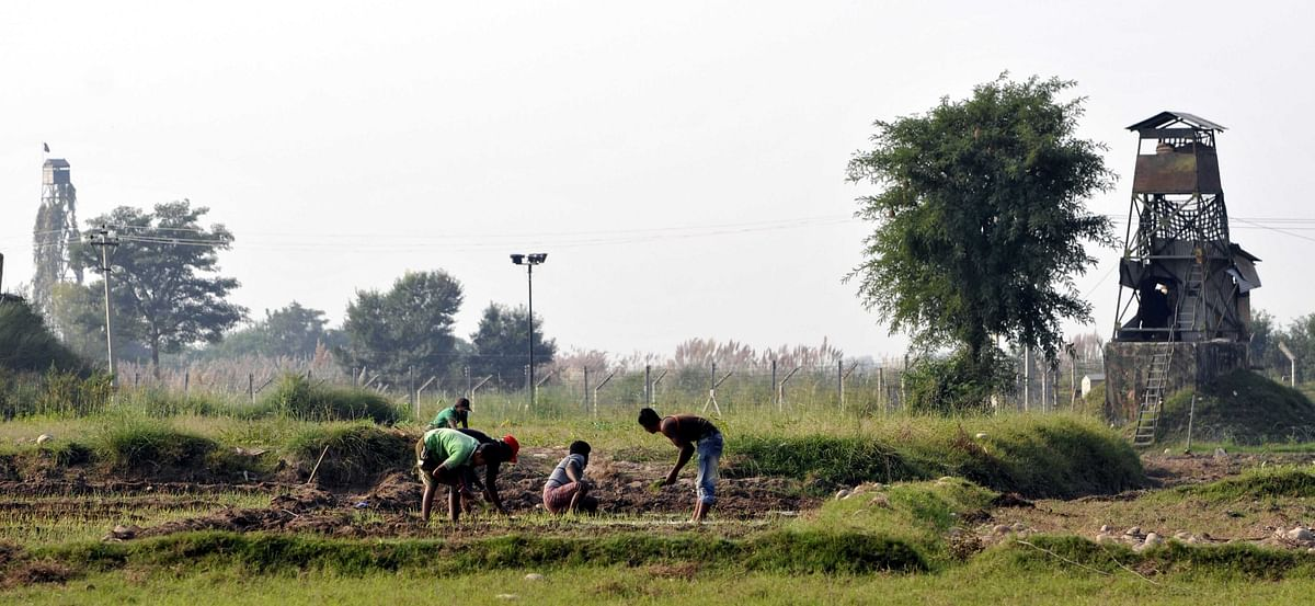 A file picture of villagers  farming between Pakistan tower (L) and Indian BSF post along with the fence at International Border in Garkhal village, Pargwal  in Jammu sector.