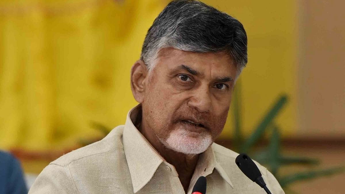 Crises not new to TDP, says Chandrababu Naidu, puts on a brave face