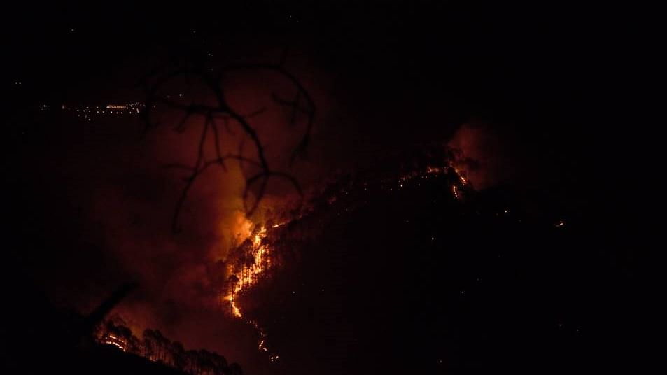 Uttarakhand: 10 days on, forest fires continue to rage