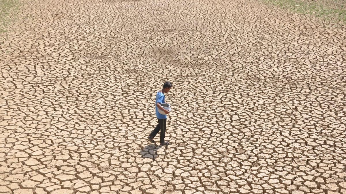 Drought ahead? About 42% of India abnormally dry, says Drought Early Warning System