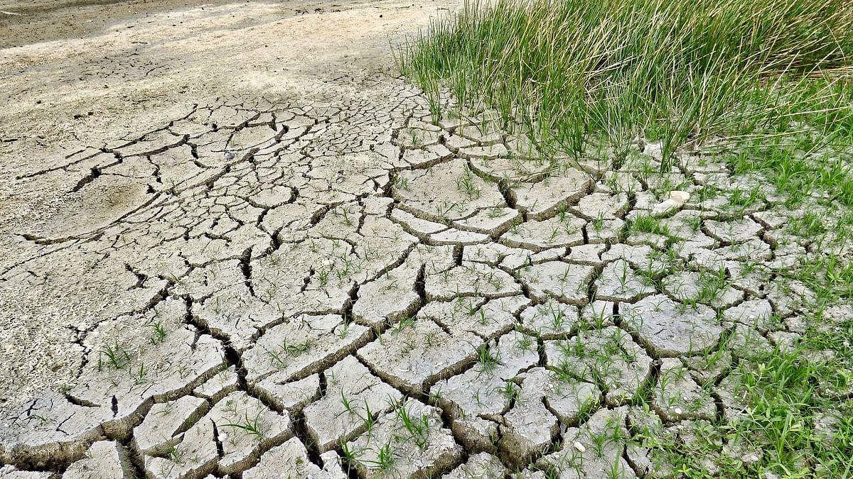 Water Crisis: Caste intensifies water pain in Bundelkhand