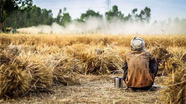 With rain gods, love god too deserts Maharashtra farmers