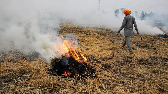 Pained over 'Toxic Clouds' on Delhi, Amarinder Singh seeks PM Modi's intervention in the 'burning issue'