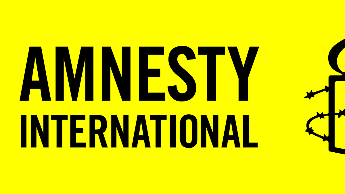Jammu and Kashmir: Amnesty chief vows to defy India's bid to 'crush' criticism