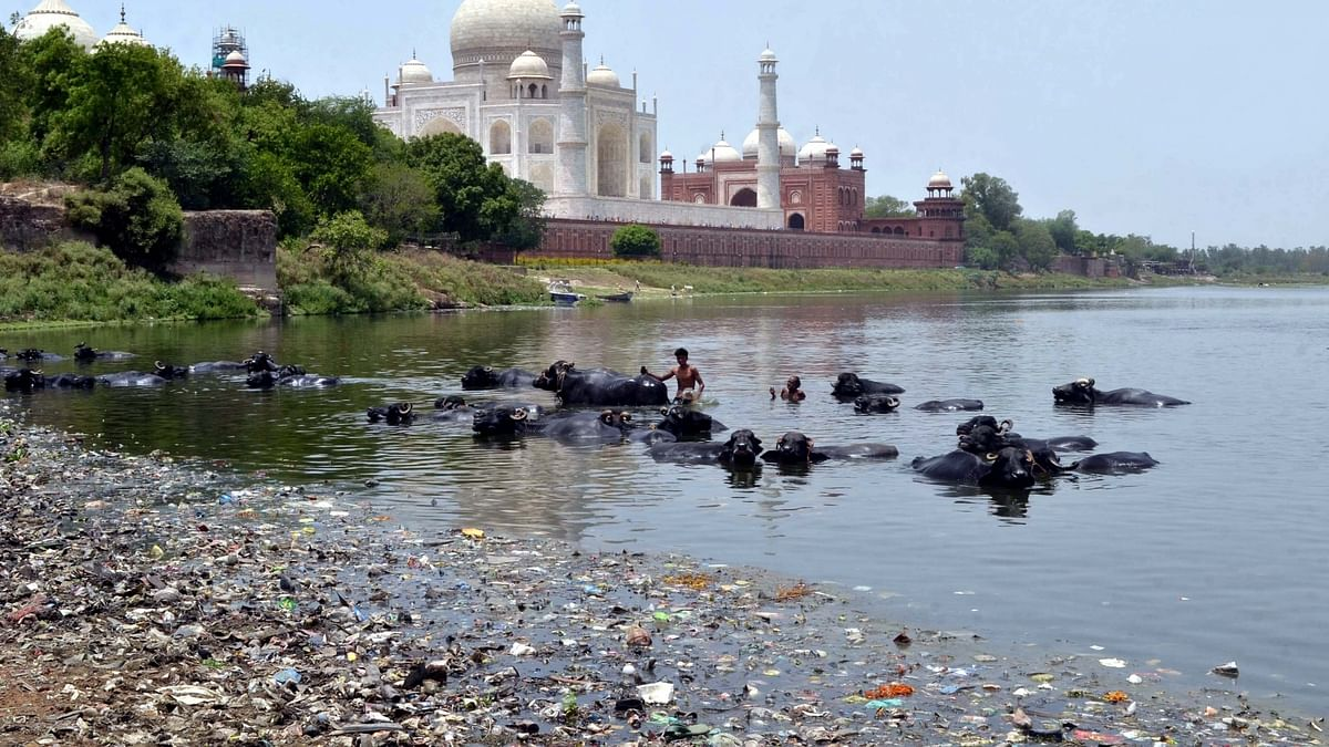 Stink is still the flavour of Yamuna in the city of Taj Mahal