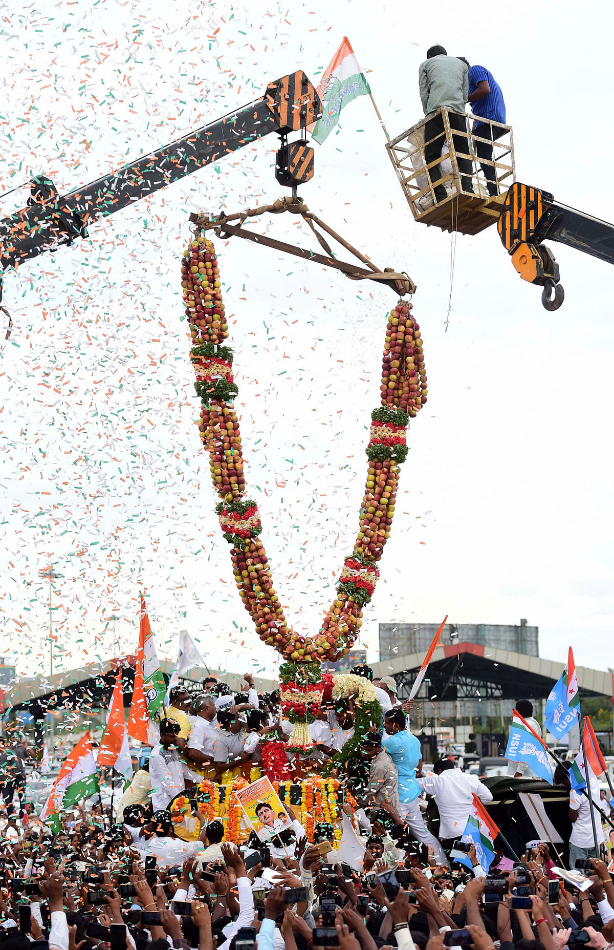 Supporters welcome Congress leader D K Shivakumar with a huge garland made with apples, on his arrival in Bengaluru on Saturday, Oct 26, 2019. (PTI Photo)