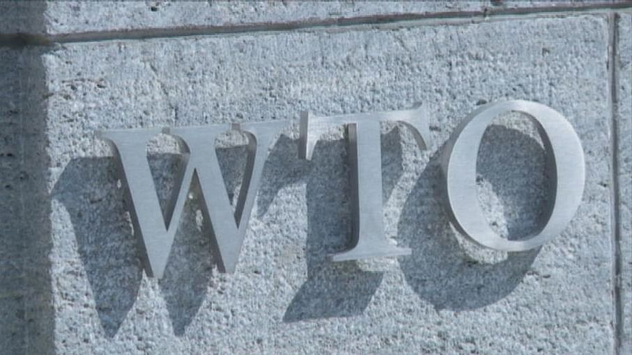 WTO Panel recommends India withdraw export subsidies