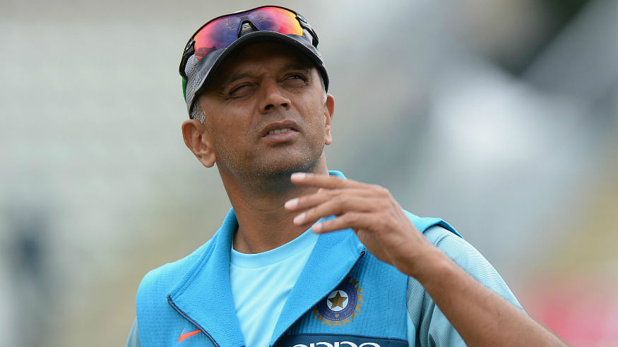 BCCI invites applications for NCA Head role, Dravid likely to reapply