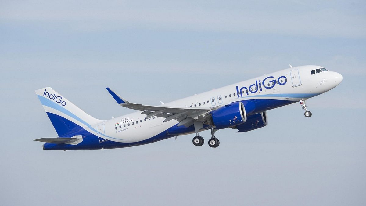 IndiGo pilot suspended for 3 months for threatening wheelchair-bound senior citizen