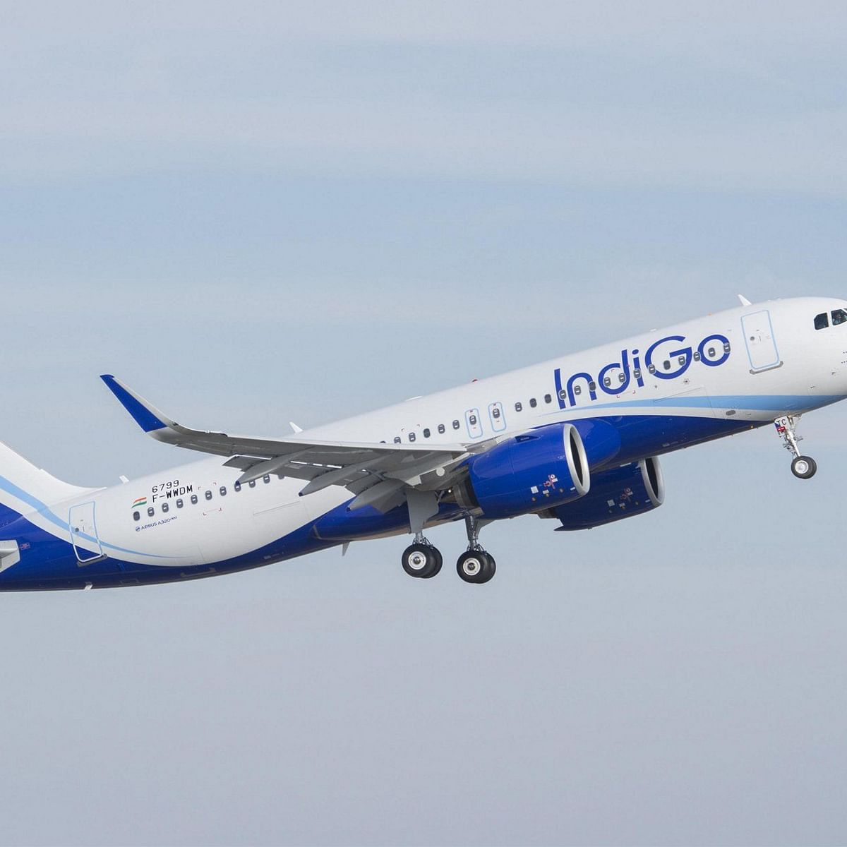 Coronavirus LIVE: IndiGo Announces Pay Cut For Senior