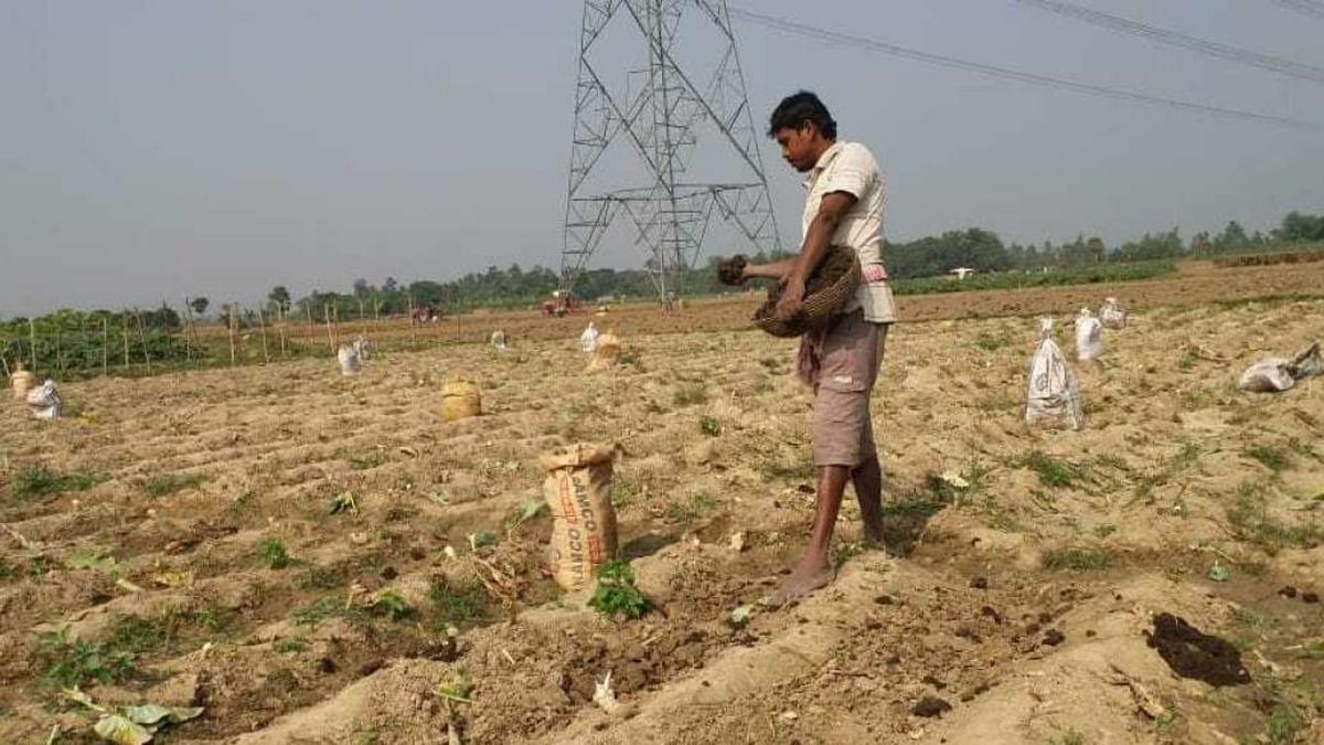 Over 5 crore farmers yet to get 3rd instalment of PM-Kisan scheme, reveals Govt data