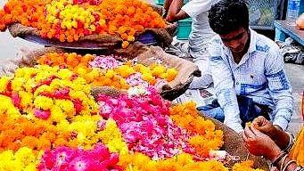Jaipur flower traders face huge losses due to lockdown