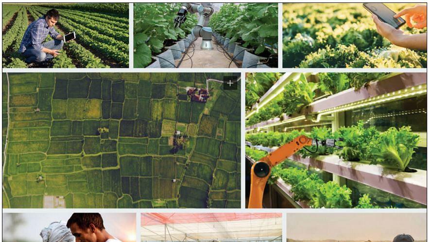 IT professionals as 'Agripreneurs': Smart farming for the smart set