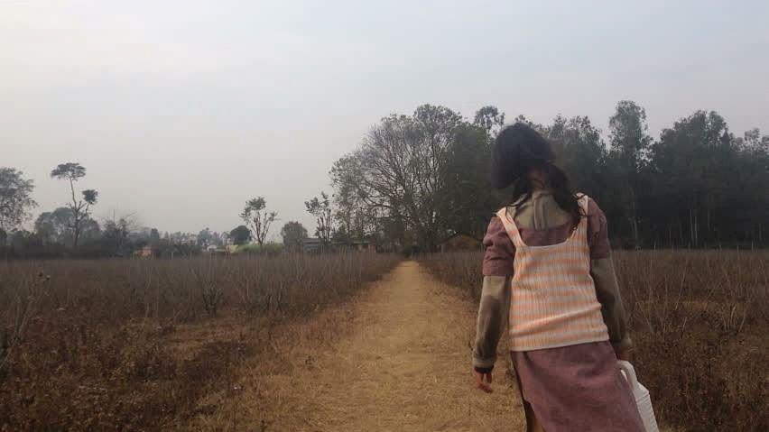 Lockdown: 12-year-old Chhattisgarh girl walking from Telangana dies