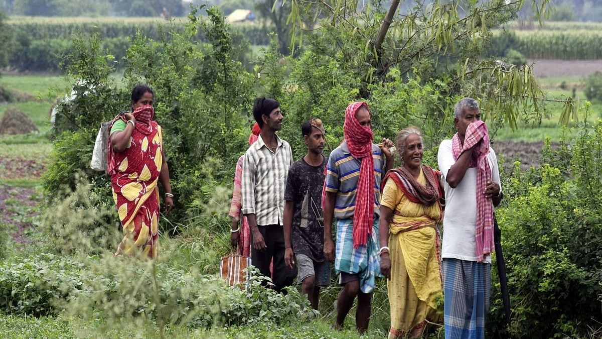 Telangana farmers can now grow only what the government wants