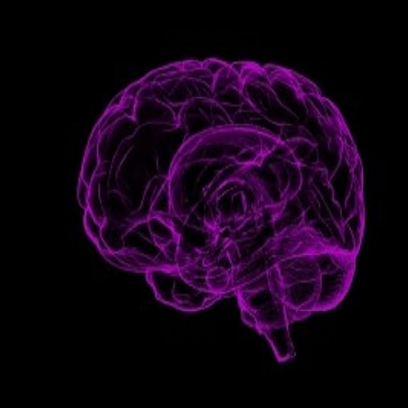 Young adults more likely to die from epilepsy: Study