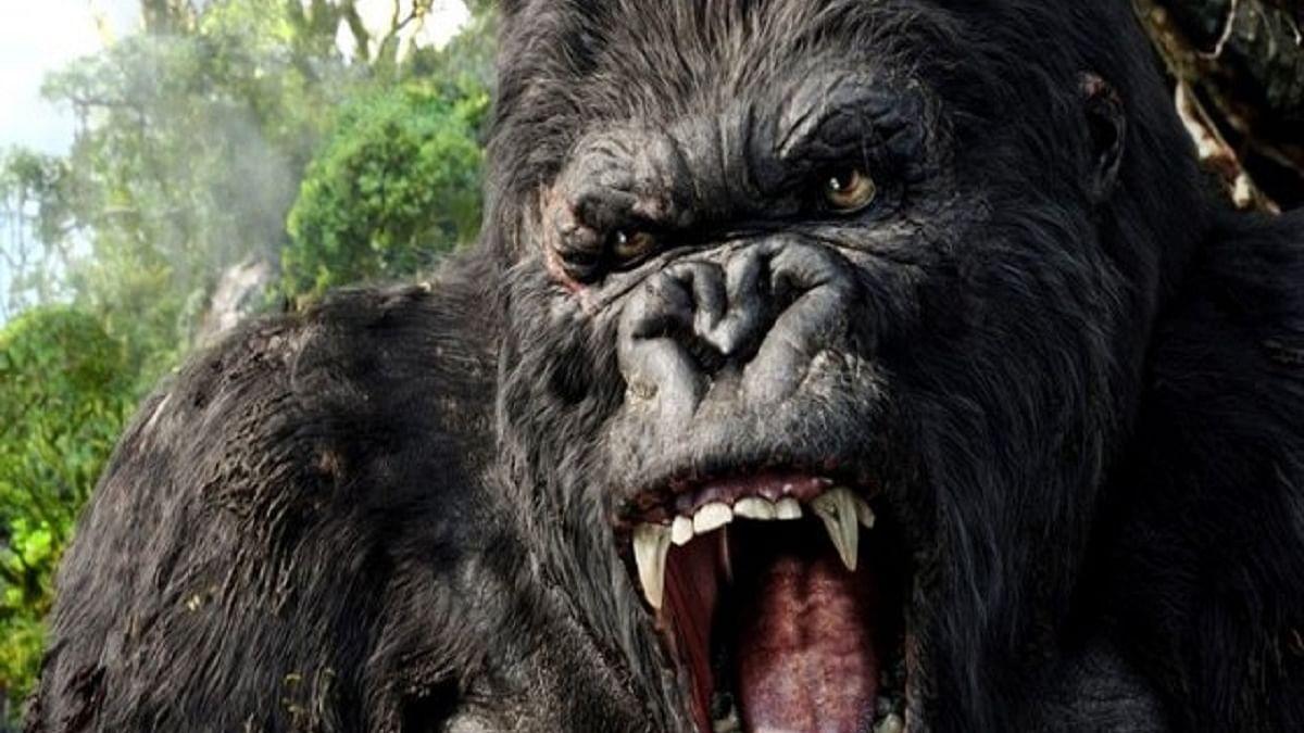 Reality Bites: King Kong At Home