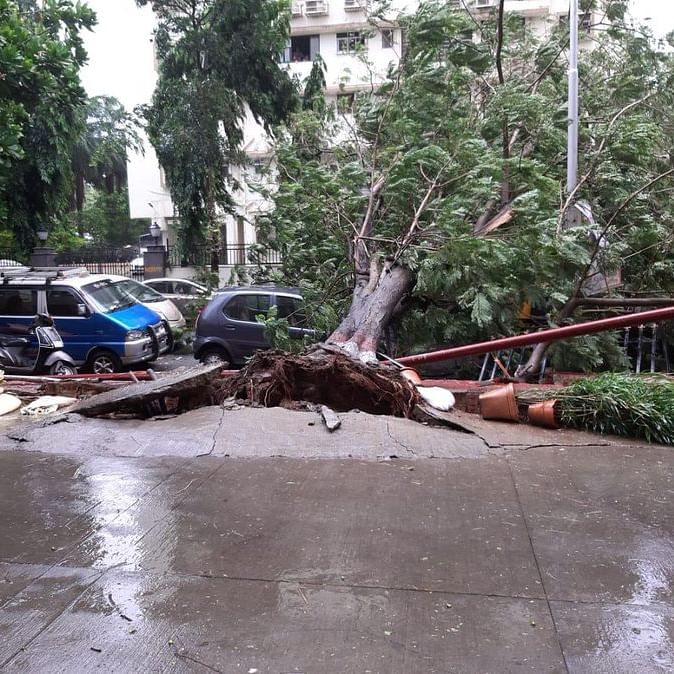 Cyclone Nisarga LIVE updates: Rehabilitation underway in Alibag, op halted at Mumbai airport till 7pm