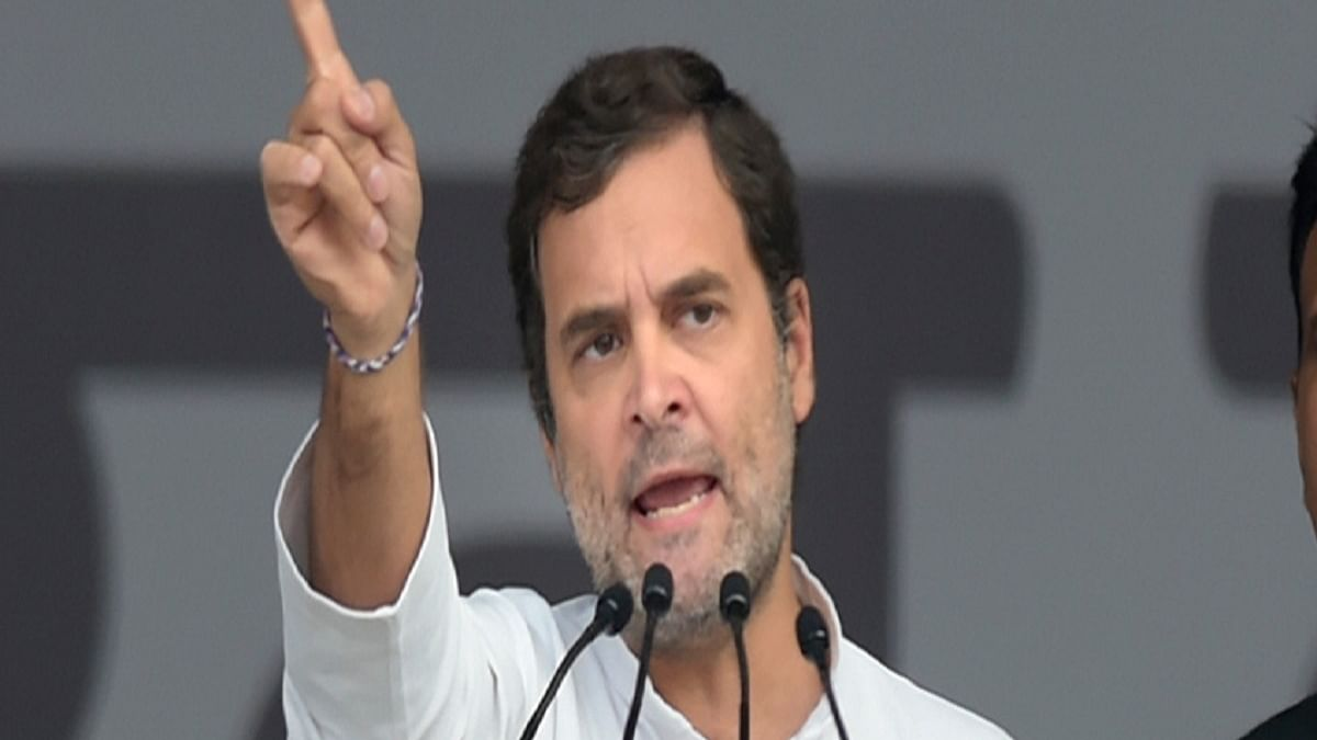 Congress MP Rahul Gandhi (Photo Courtesy: social media)