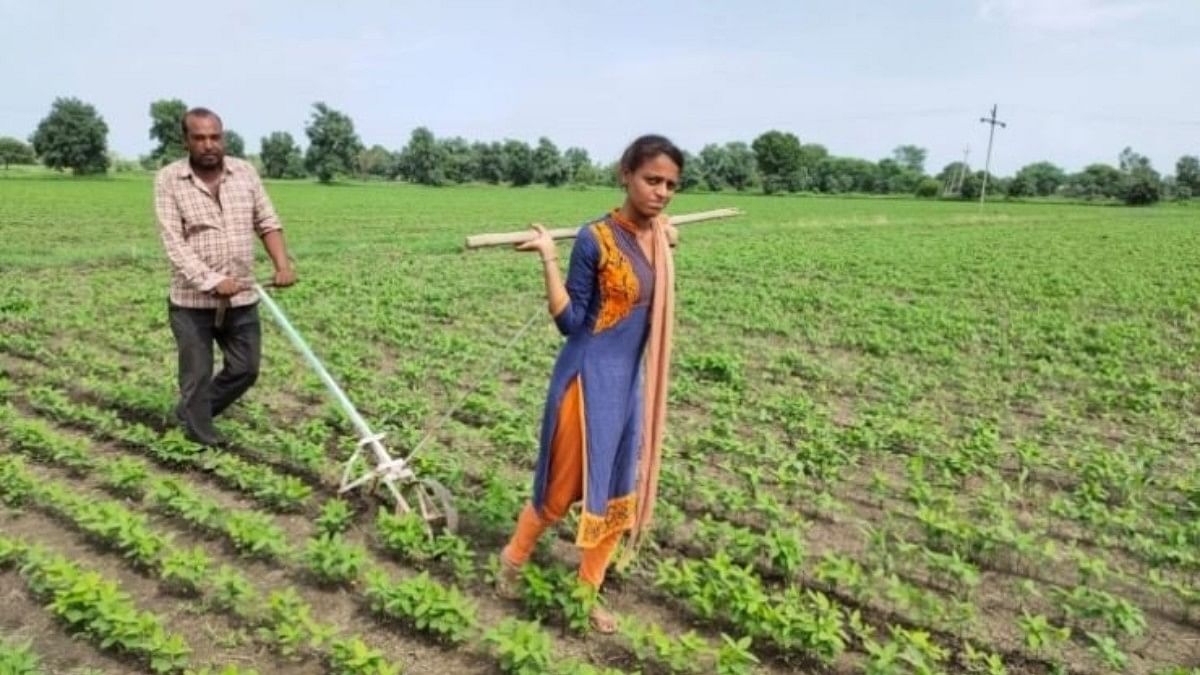Families in penury, Mother India's daughters pull ploughs in the fields of MP