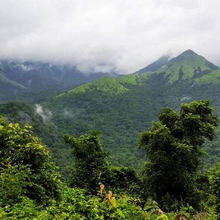 Scrap environment impact assessment draft: Green activists
