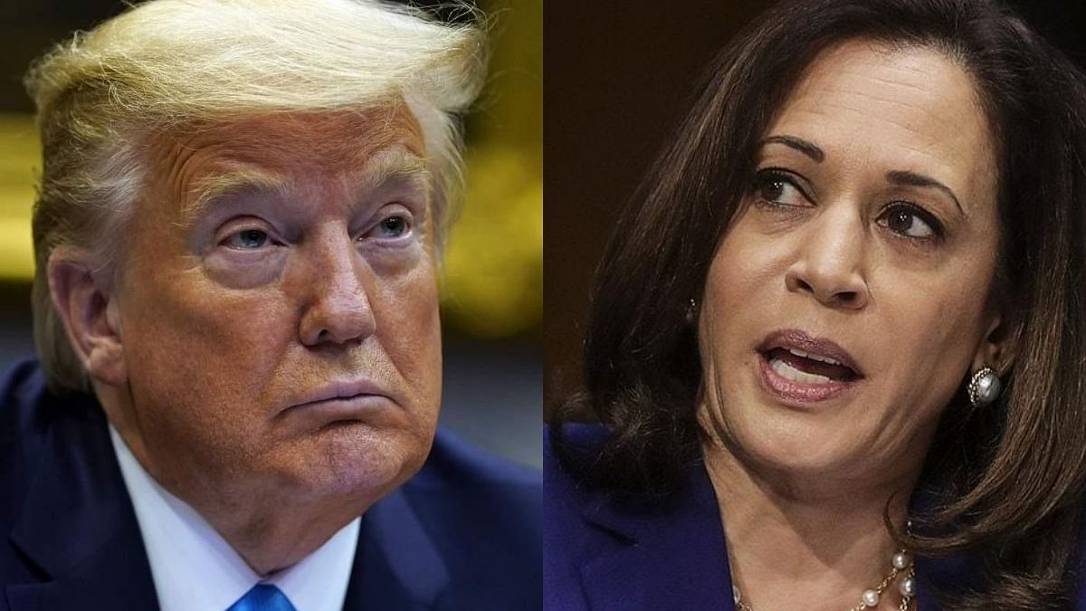 Trump gives credence to false Kamala Harris 'birther' theory, fuels misinformation online campaign