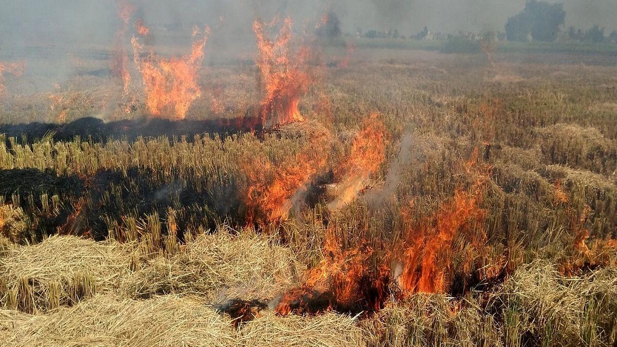 Delhi air to worsen in next 3 days, thanks to stubble burning