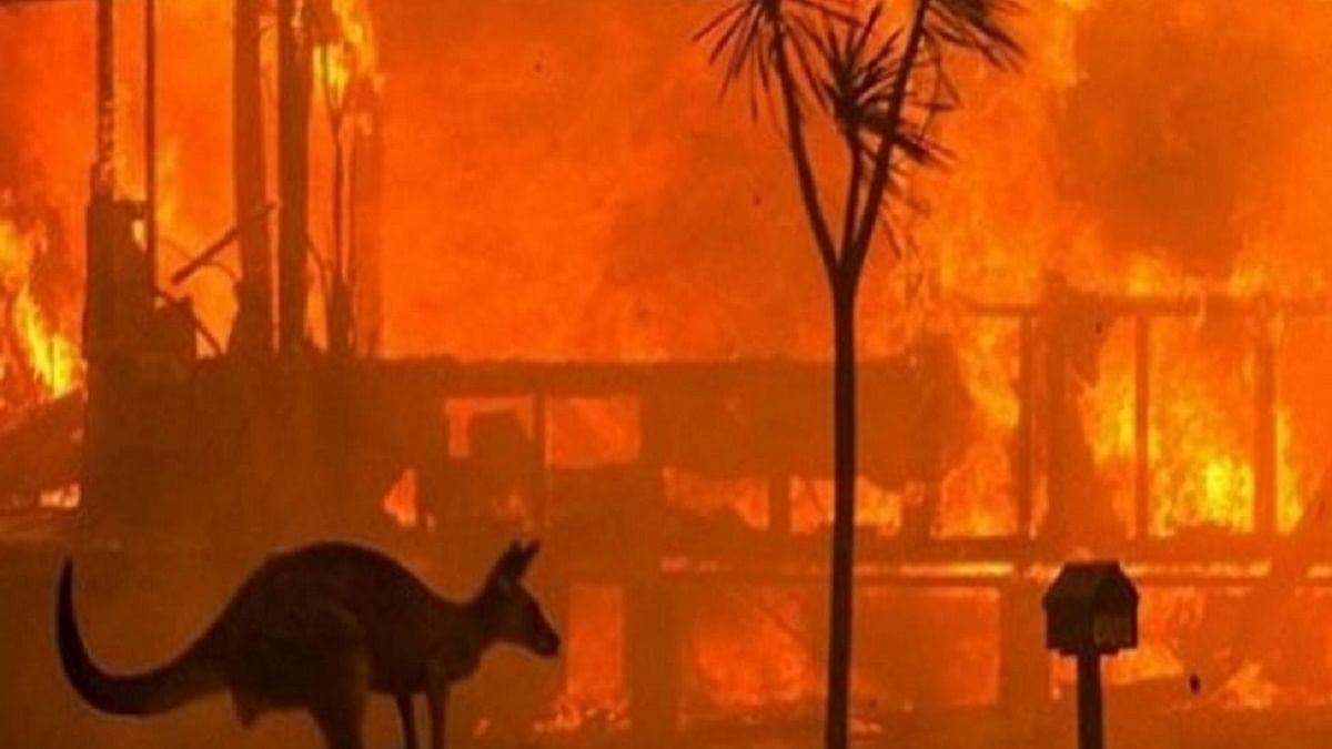 'Australia facing more frequent, intense natural disasters'