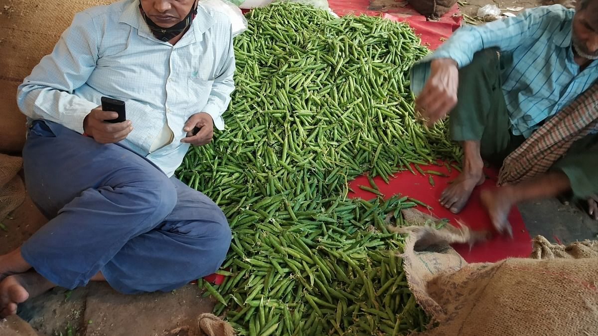 India's September WPI rises on high food prices