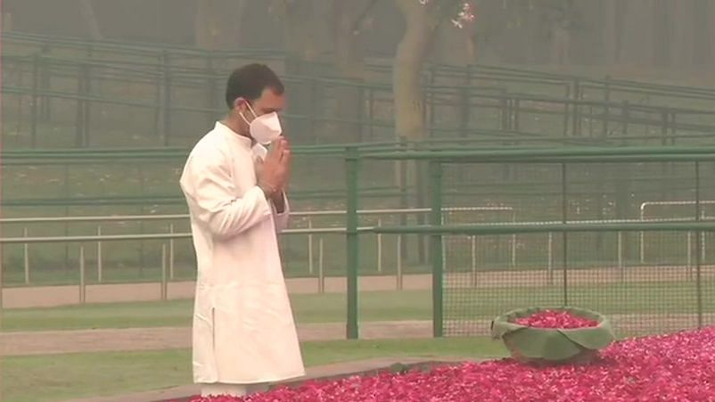 Towering visionary who laid foundation of our country: Rahul Gandhi's tribute to Nehru