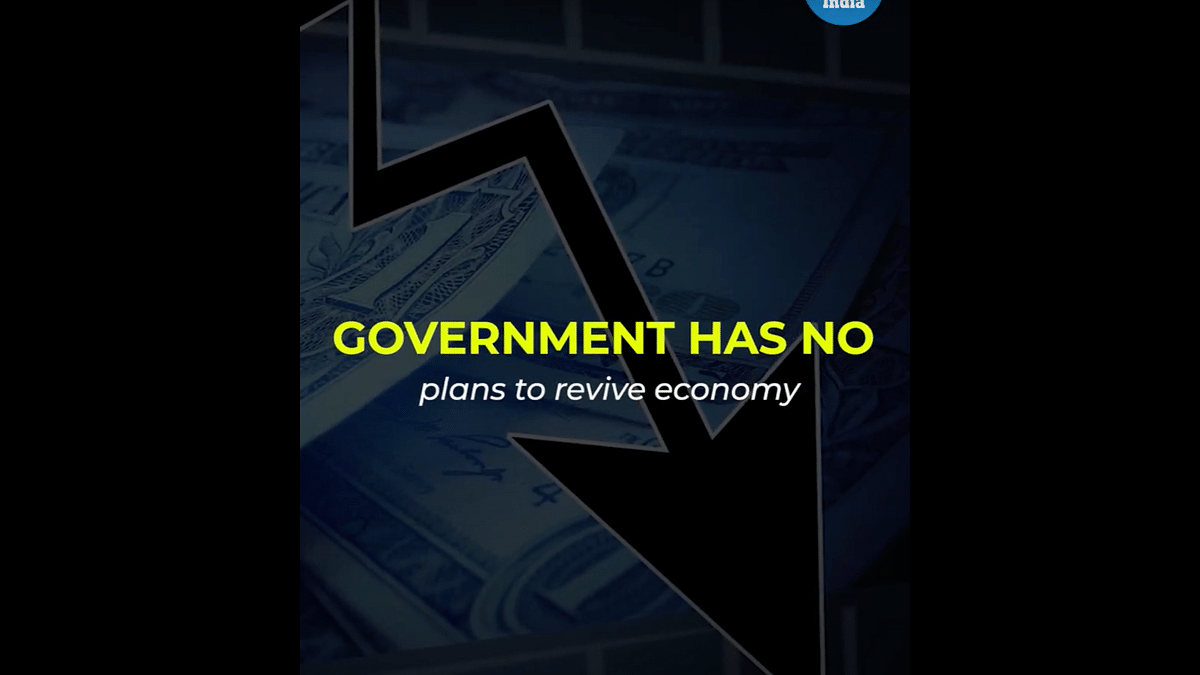 Government has no plans to revive the economy