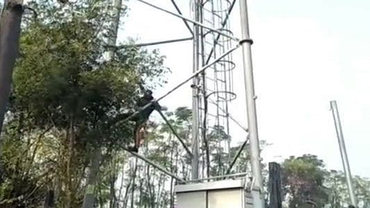 Farmers in Punjab vent anger against Reliance Jio, over 1500 towers damaged so far