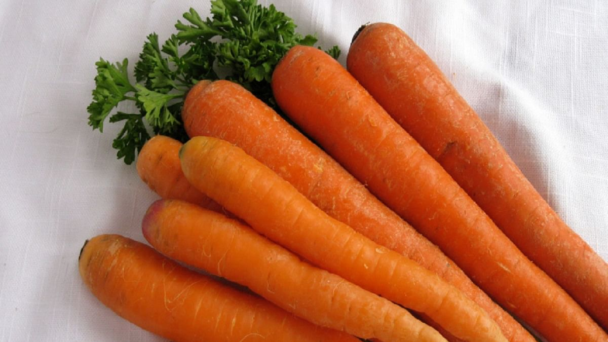 Study reveals how carrots are healthy for heart