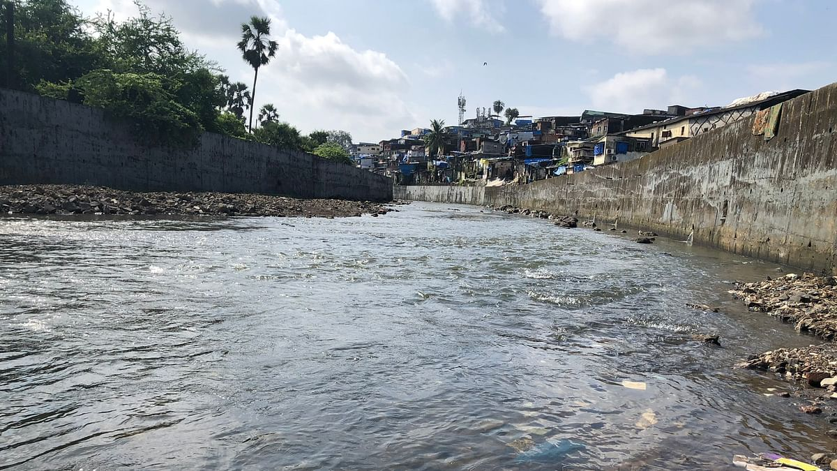Not a single rupee from Centre for Mithi River clean-up: RTI
