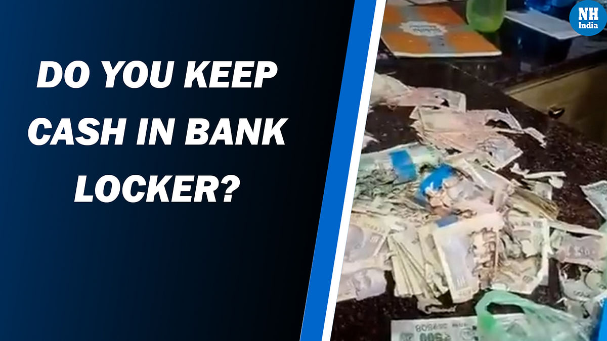 Termites eat Rs 2.2 lakh cash kept in bank locker! 'unnatural incident', rectified it, says bank