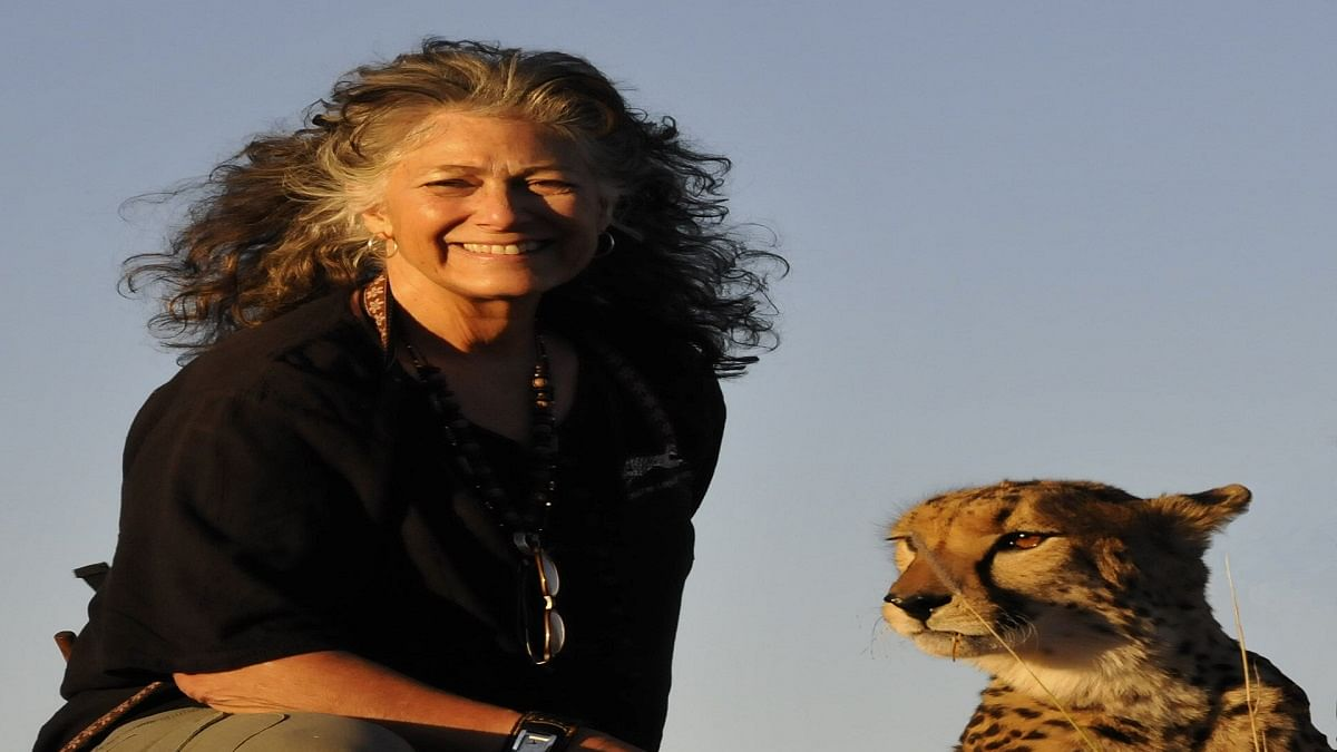 Exciting to think of India as having cheetahs again: Dr Laurie Marker, founder, Cheetah Conservation Fund