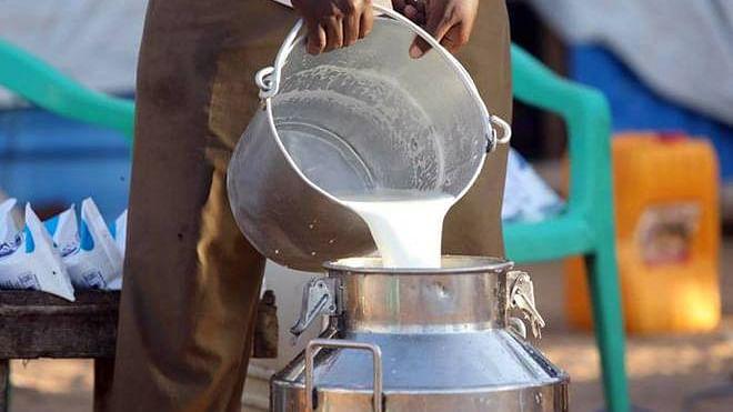 Farmers in 3 Uttar Pradesh villages stop milk supply in solidarity with farmers' movement