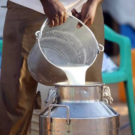 More dairy farmers stop milk supply in UP district