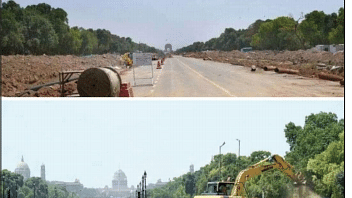 Trees in the central vista: Jamun trees travel from Rajpath to Badarpur