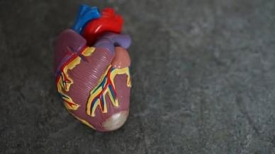 Post-Covid cardiac care is important: Doctor